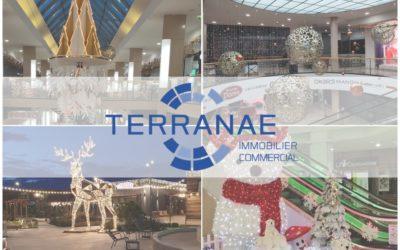 28 novembre : réouverture des 62 Centres Commerciaux/Retail Parks gérés par Terranae